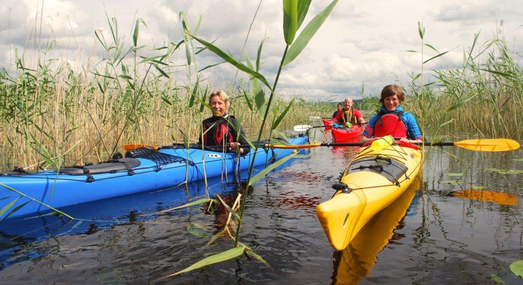 Äventyr i Sverige, paddlar kommer genom vassen