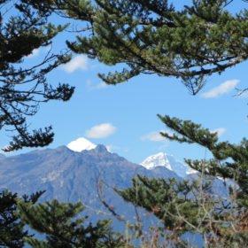 bergsvy på vandring i Bhutan