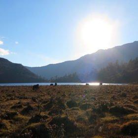 en av flera vackra sjöar på vandring i Bhutan