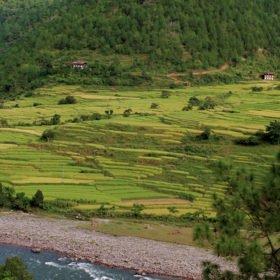 Floden Po Chhu