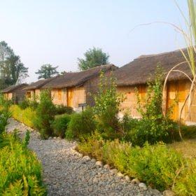 Chitwan nationalpark. Bambustugor med fin trädgård.