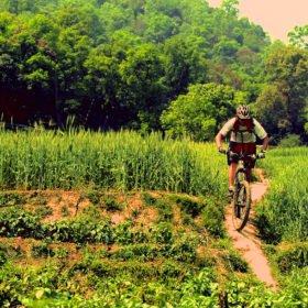 MTB Nepal, en cyklist cyklar mountainbike på en stig genom gröna risfält