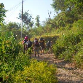 Resa Tibet & Nepal, en grupp vandrar på en stig i ett grönt Nepal