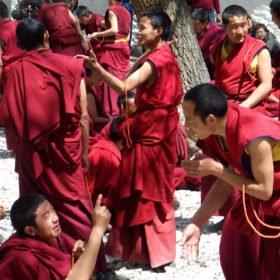 Resa Tibet och Nepal, munkar debatterar i Sera-klostret i Lhasa