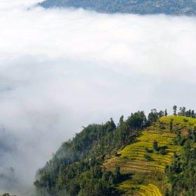Vandringsresa Nepal. Risterasser och moln.