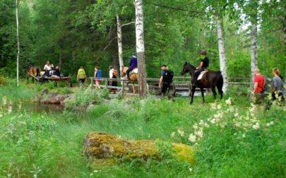 Äventyr i Sverige, vandring och ridning genom en skog