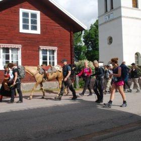 Äventyr i Sverige, promenad genom Dala-Floda