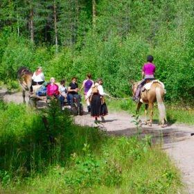 Äventyr i Sverige, häst och vagn genom skogen