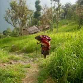 Annapurna Base Camp, em gammal dam med käpp på väg upp för en stig