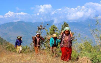 Gruppresa Nepal, kvinnGruppresa Nepal, kvinnor bär korgar med hjälp av band över pannanor bär korgar på huvudet