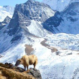 Everest Basecamp, jak