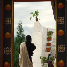 Bhutanresa, bild från Paro Dzong
