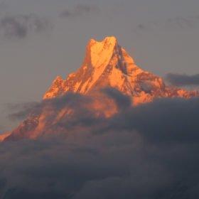 Det heliga berget Machhapuchhre, även kallat Fishtail i solnedgången