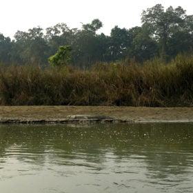 krokodil rundresa Nepal