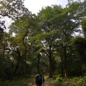 promenad rundresa Nepal