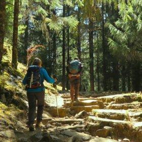 vandrare i skogen på Bhutan vandring