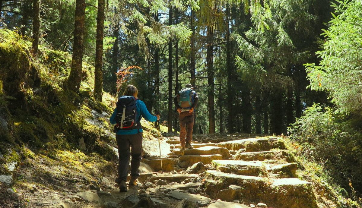 vandrare i skogen i Bhutan