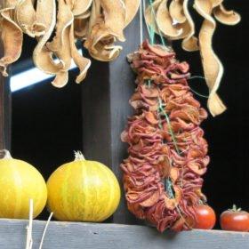 Torkad chili på Bhutan vandring