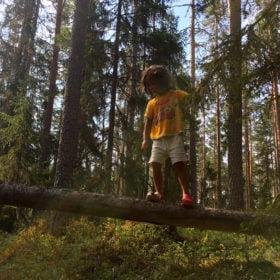 en pojke balanserar på famljeäventyr