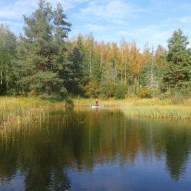 paddlare på SUP-bräda på helg med skogsbad