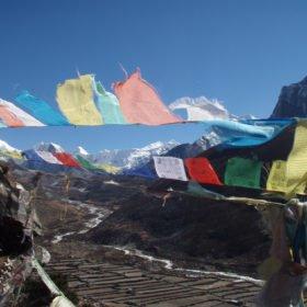 böneflaggor fladdrar i vinden