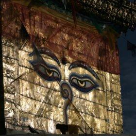 tempel på skräddarsydd resa i Nepal