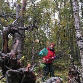 Kerstin utforskar sin relation till skogen