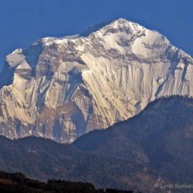 vy av Dhaulagiri på trekking i Nepal
