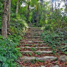 stentrappa på trekking i Nepal