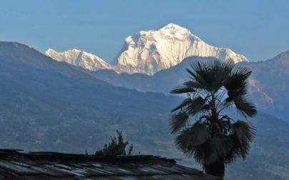 trekking i Nepal, vy av Dhaulagiri