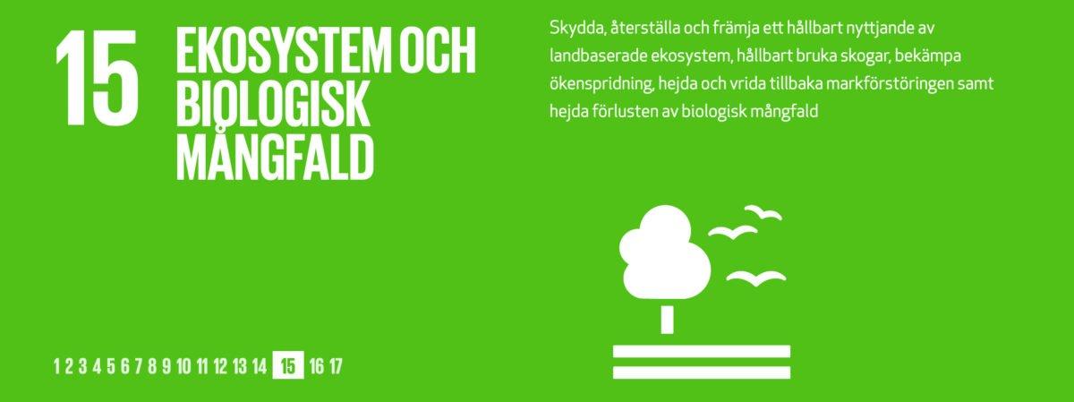hållbara resor, globalt mål