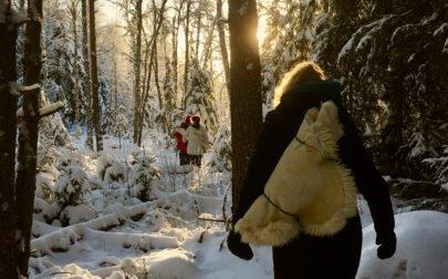 skogsbad vinter